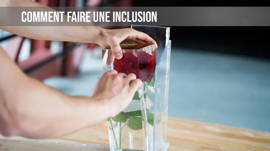 resine synthetique inclusion